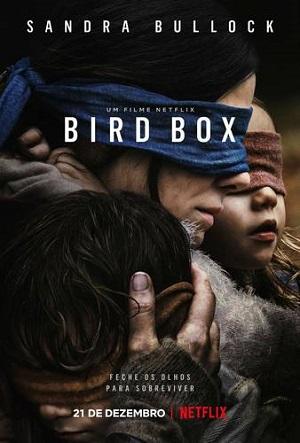 bird box caixa de passaros