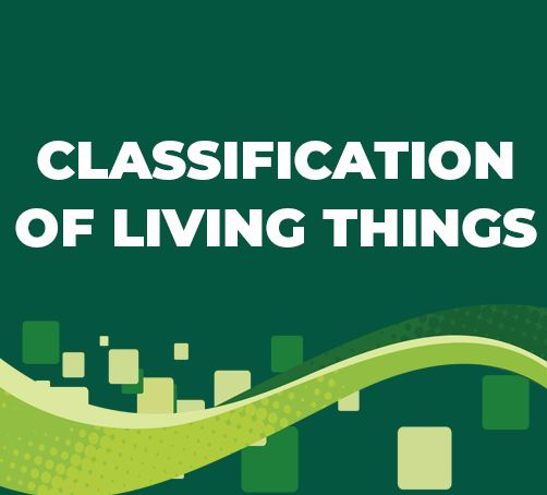 CLASSIFICATION OF LIVING THINGS FULL NOTES | FORM FOUR BIOLOGY