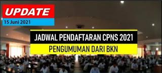 Pengumuman Pendaftaran CPNS Terbaru Tahun 2021