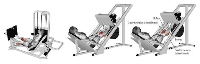 Leg Press Calf Raise: