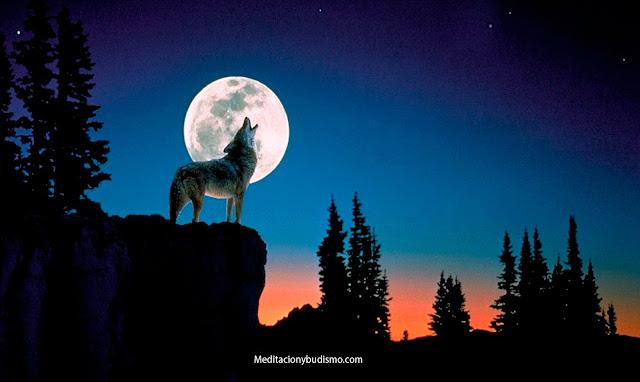 Horóscopo Lunar - Clima semanal