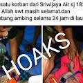 HOAKS Beredar Foto Bayi Selamat Dari Tragedi Sriwijaya Air SJ 182