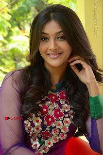 Actress Pooja Jhaveri Latest Stills in Purple Salwar Kameezt at Dwaraka Success Meet  0196.JPG
