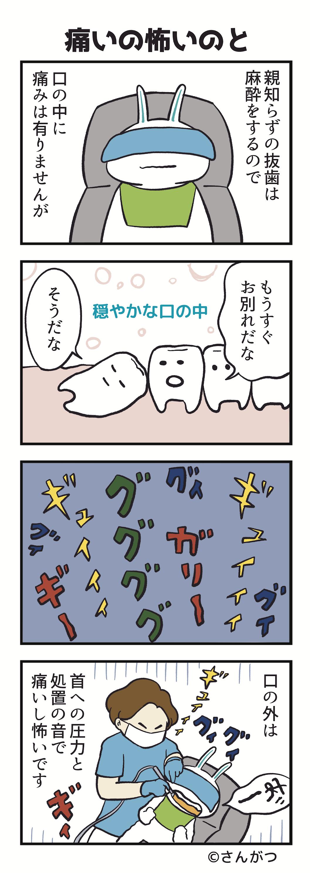 「親知らずの抜歯・・・抜いた編」
