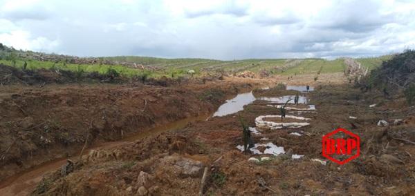 Sungai Awang Keruh. Warga Desa Hayaping Mengeluh. Ini Dia Perusahaan Sawit Yang Menjadi Biang Keroknya!!