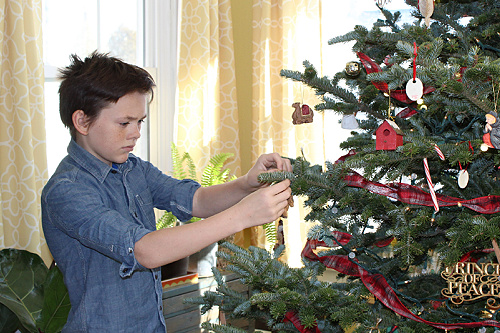 boy hanging ornament on Christmas tree