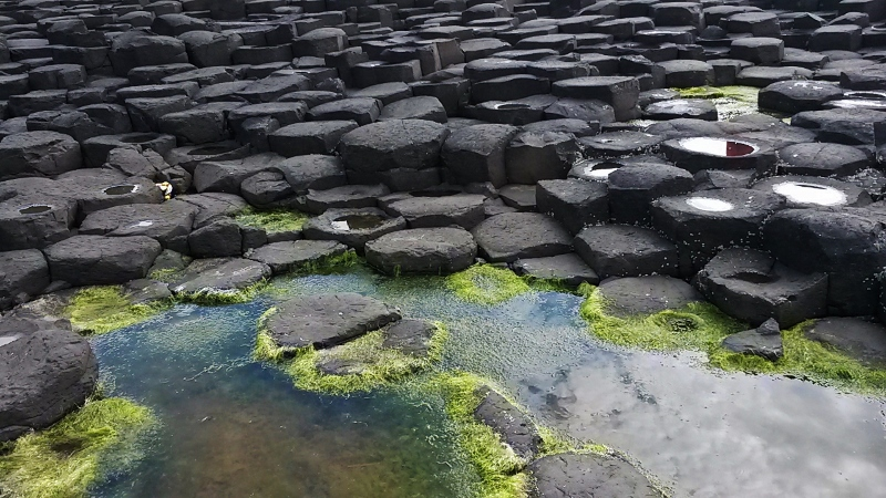 Rock pool and hexagonal stones at Giant's Causeway