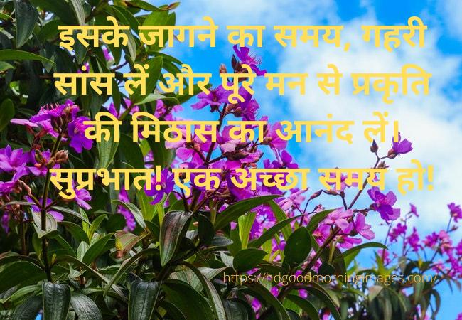 good morning images in hindi hd