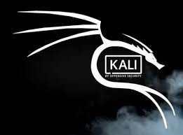 How To Install Kali Linux On Any Android 2019 on upnextskills.blogspot.com