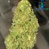 5 Interesting Uses of CBD Hemp Flower We Bet You Didn't Know