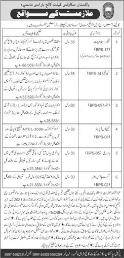 Latest Jobs in Pakistan in Pakistan Scouts Cadet College Batrasi Mansehra Jobs 2021
