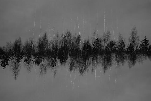 Synteza - NADFOTOGRAFIA - Niegowonice - 06.01.2021. fot. Łukasz Cyrus, 2021.