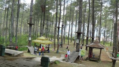 Hutan Pinus di Dago Pakar Bandung