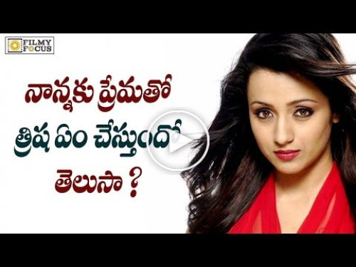 Actress Trisha Secret Business Plan Revealed