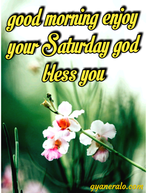Good morning Saturday images download