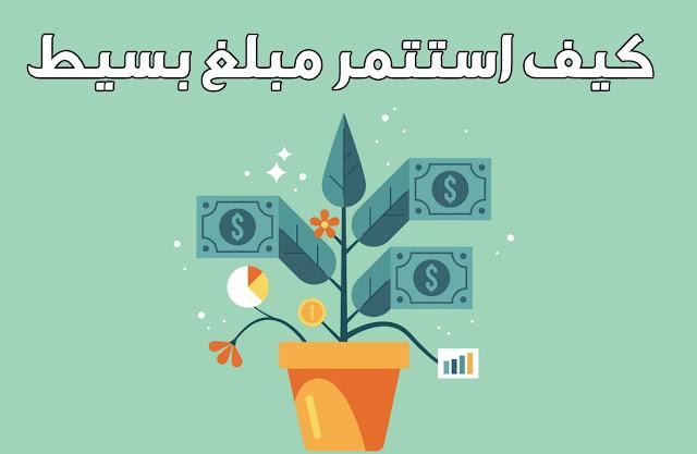 افكار لاستثمار مبلغ بسيط [من 10 الى 100+ دولار]