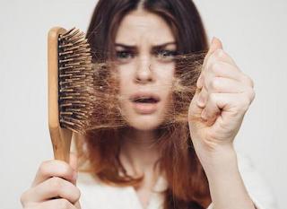 10 Tanaman Berkhasiat Memulihkan Rambut Rontok