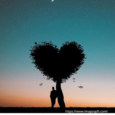 love pics shayari