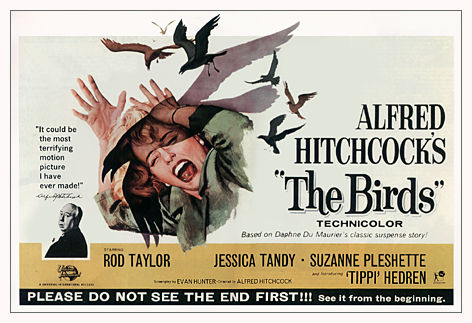 Sasha Hart CG Artist: Film Reviews - The Birds (1963)