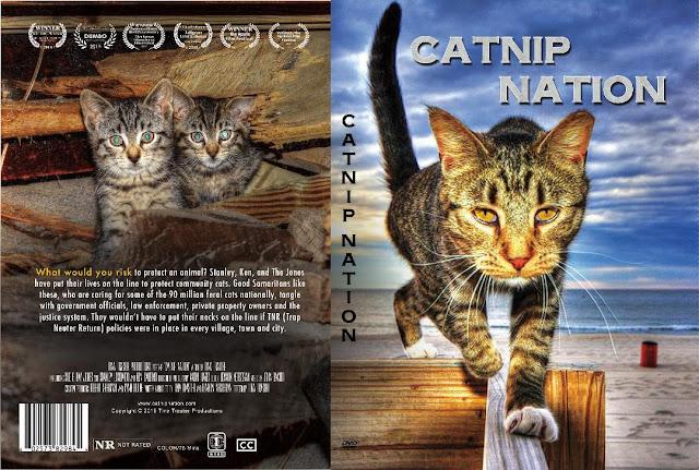 catnip nation dvd