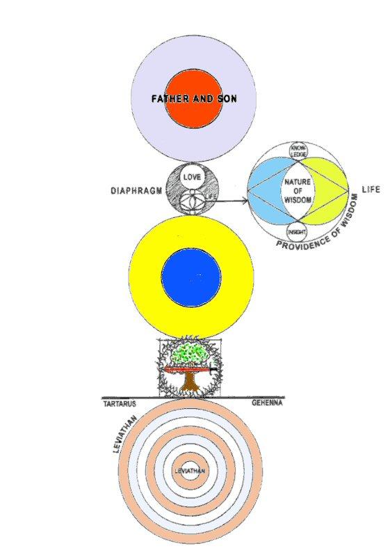 Risultati immagini per diagramma degli ofiti