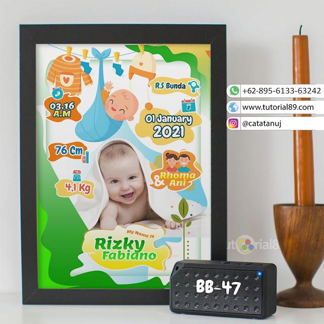 Biodata Bayi Costume Unik Kode BB47 | Hijau Putih