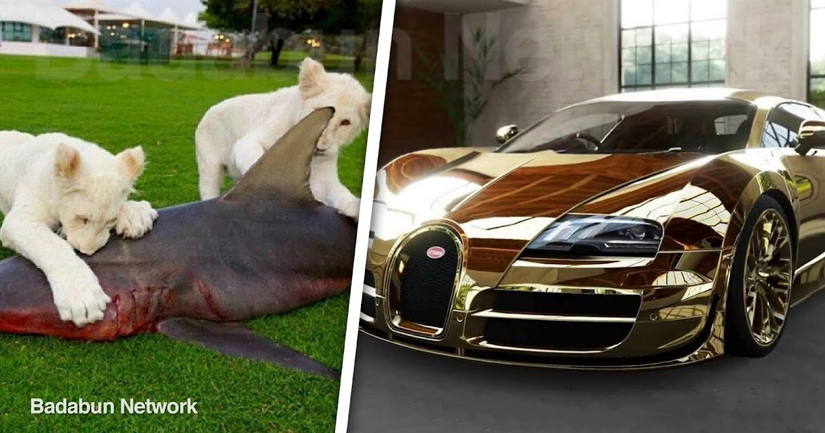 dubai lujos millonarios multimillonarios principearabe riqueza