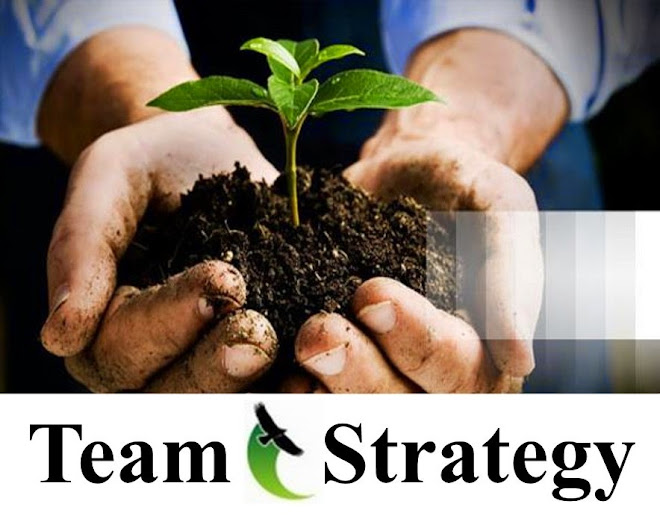 Team Strategy | Homeowner Association HOA and Real Asset Property Management