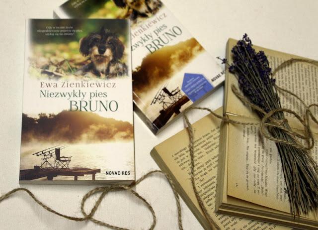 """""""Niezwykły pies Bruno"""" w mojej biblioteczce"""