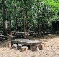 table de pique-nique en bois et rondins