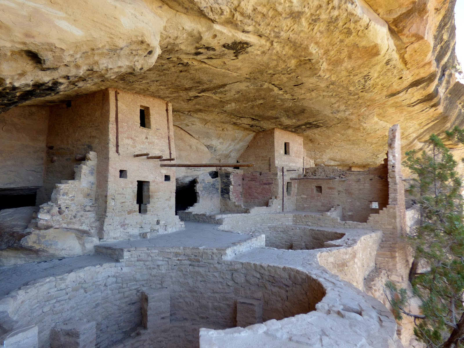 mesa verde national park black singles Title black-and-white images of cliff dwellings at mesa verde national park in montezuma county, colorado the park protects some of the best-preserved ancestral puebloan archeological sites.