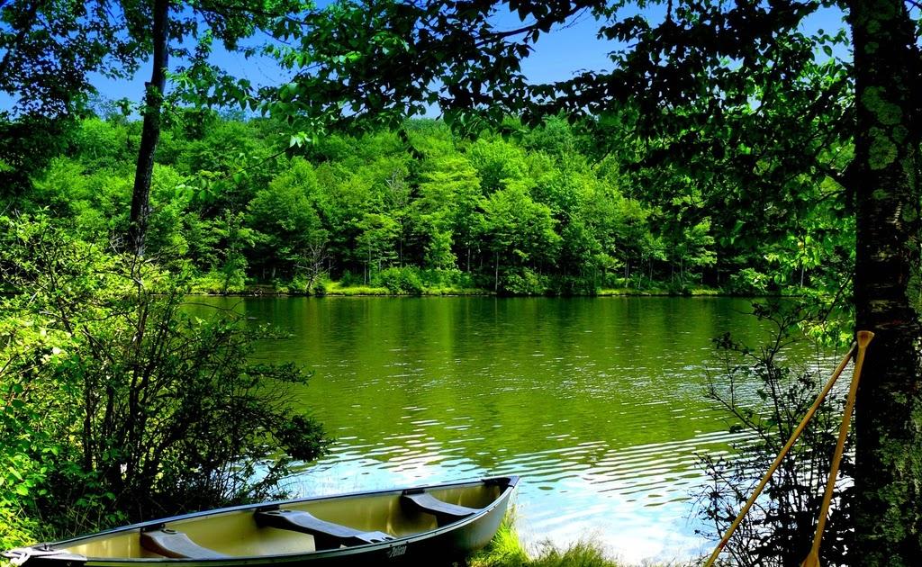 Рыбалка на берегу красивого озера