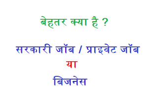 what is better government job, private job or business