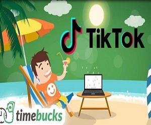 Make Money Online Regular Passive income TimeBucks