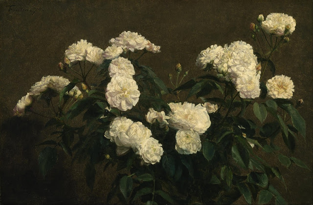 white-roses-pic-hd