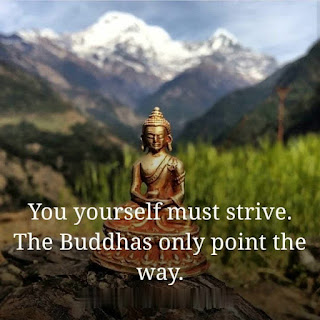 images-of-lord-buddha-with-quotes
