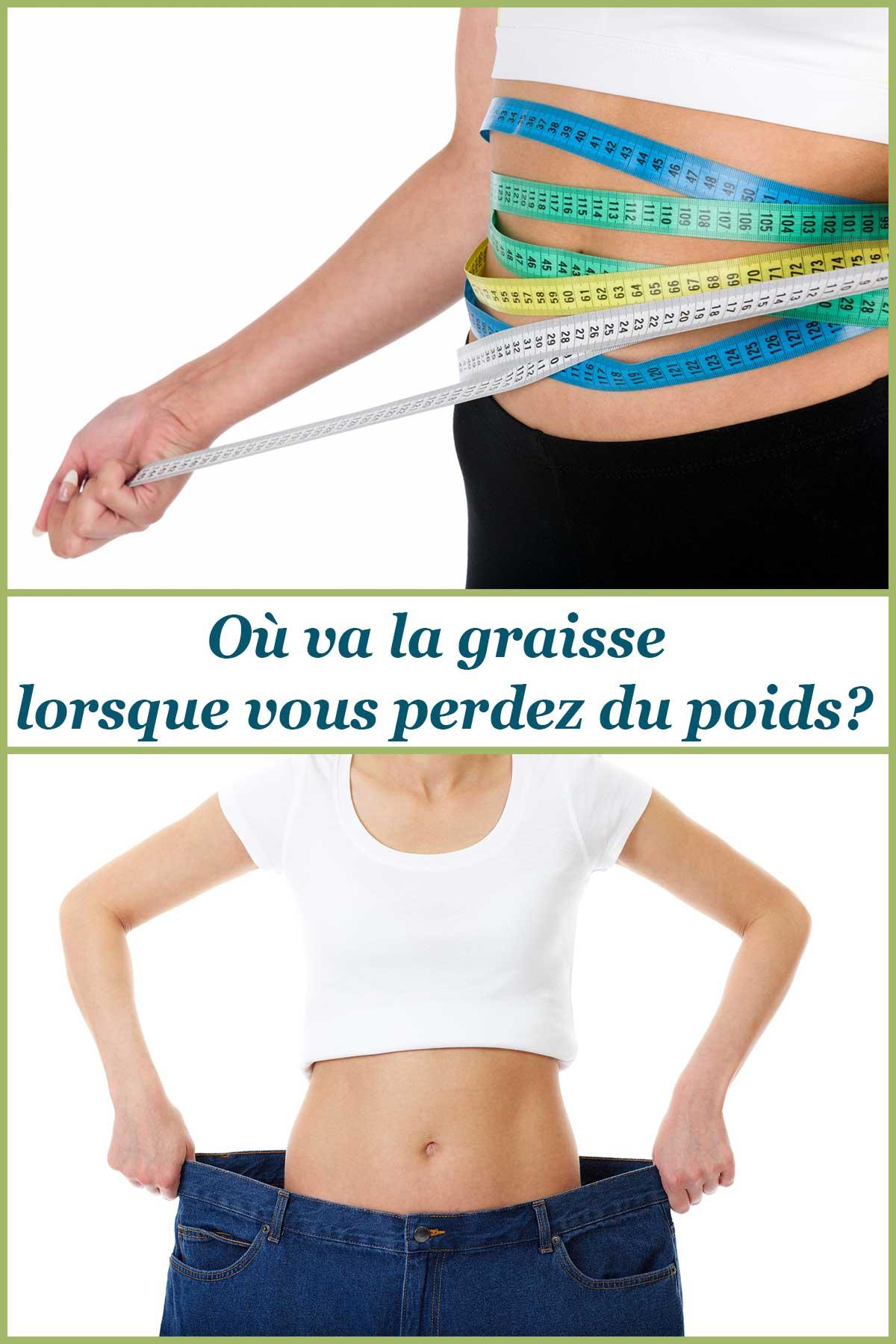 Où va la graisse lorsque vous perdez du poids?