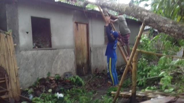 Hujan Deras dan Angin Kencang Sebabkan 1 Rumah Warga Desa Kalijati di Kab.Pangandaran Tertimpa Pohon