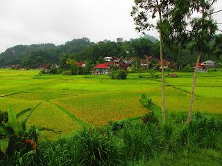 Bori Toraja