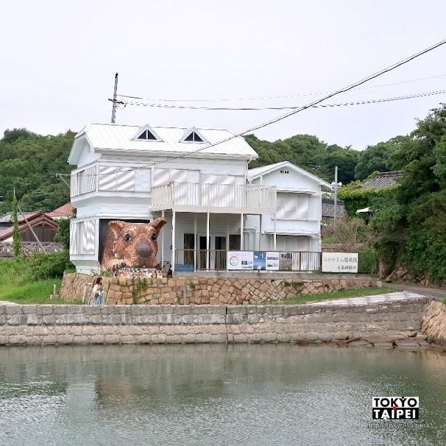 【犬島狗屋計劃】犬島上的島犬 3公尺高超萌大狗趴在屋裡探頭看海