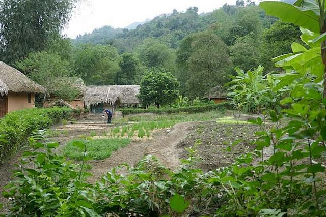 pan-hou-village-nord-vietnam