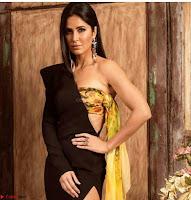 Beautiful Katrina Kaif  Exclusive Galleries 019.jpg