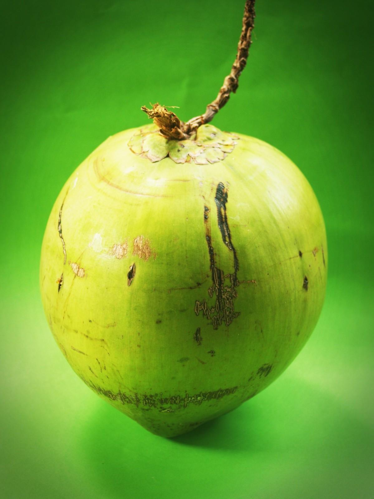 Coconut - Foto: © Benjamin Madeira / RUL2C/Instagram