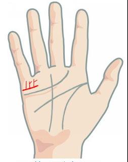 Garis tangan anak kembar