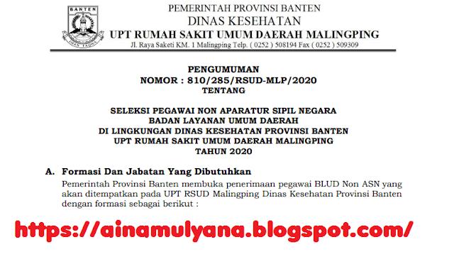 Lowongan Kerja Rekrutmen Pegawai Non PNS RSUD Malingping (Banten) Tahun 2020