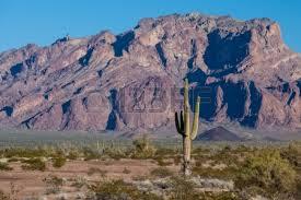 Yuma, Arizona (tempat tercerah di dunia)