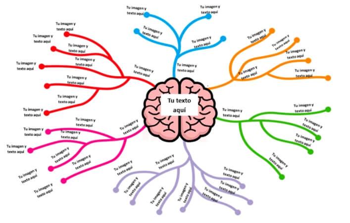 Plantilla mapa mental diseño creativo líneas de neuronas