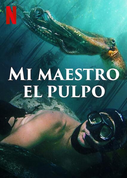 My Octopus Teacher (2020) NF WEB-DL 1080p Latino