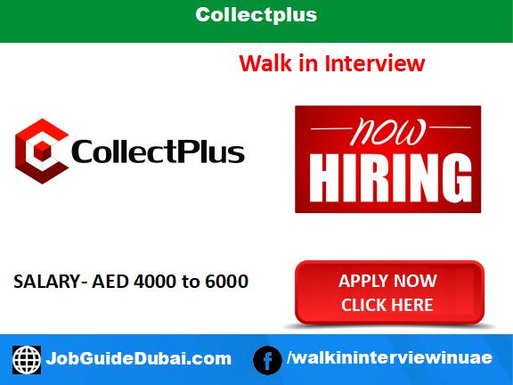 Collectplus career for .net developer jobs in Dubai UAE