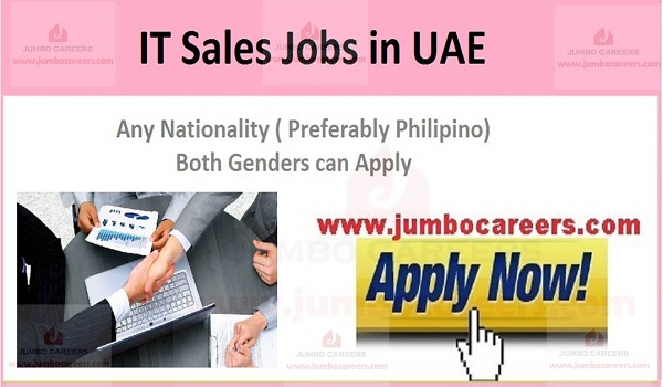 It jobs dubai 2020